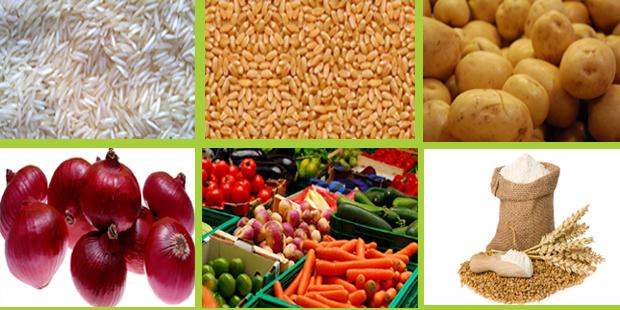 Agistin Biotech Pvt. Ltd, Ahmedabad - Basmati & Non-Basmati Rice Supplier & Exporter
