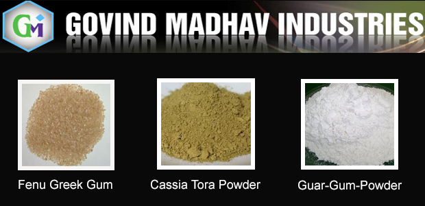 Govind Madhav Industries in Mehsana - Guar Gum Powder Manufacture