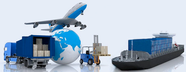Relocation and Moving Solutions in Ahmedabad-Leo India Packers and Movers Pvt. Ltd