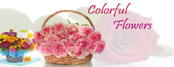 Send Flowers, Chocolates & Cakes - Ahmedabad Gift Shop
